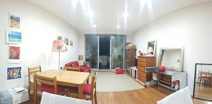 CAMPERDOWN / NEWTOWN furnished room with ensuite, opposite Sydney