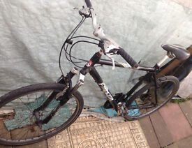 mountain bike falcon montana