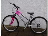 Ladies 18 speed Adults mountain bike only £45