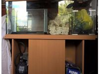 3ft Fish tank and Stand with extras