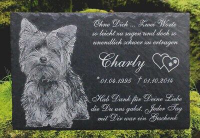 Tiergrabstein Fotogravur Grabstein Granit Katze Hund Gedenkstein Wunschgravur