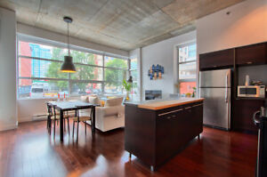 amazing condo 2+2 FULLY FURNISHED, 1018sf in Old montreal