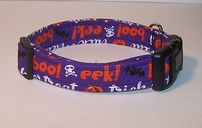 Wet Nose Designs Eeek!  Halloween Words Dog Collar on Purple Pumpkin Bat Skull (Halloween Skulls Designs)