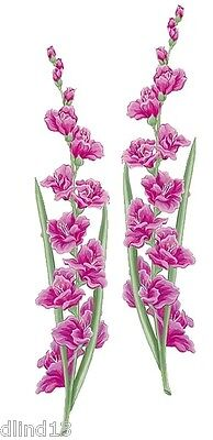Tatouage Magenta Gladiolas Rub-on Transfer Mural