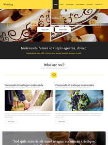 Expand Your Gigital Look with a Local Certified Web Developer Cambridge Kitchener Area image 5