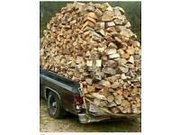 Logs seasoned fire wood
