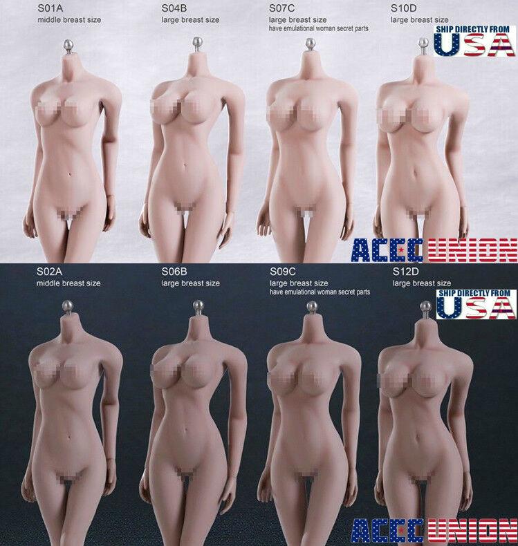 Купить TBLeague PHICEN - TBLeague PHICEN 1/6 Scale Steel Skeleton FEMALE Seamless Figure Body USA SELLER