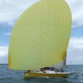 "Racer/Trailer Sailor Costin 8 ""The Duck"""