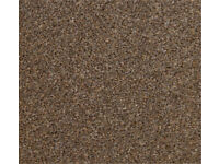2.75x4.00 carpet