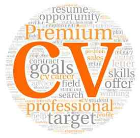 Looking for Professional Job CV Writing? Resume / Job Cover Letter / Proofreading / CV Editing Help