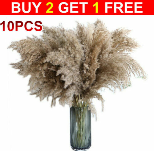 Home Decoration - Natural Dried Pampas Grass Reed Flower Bunch Bouquet Home Wedding Decor