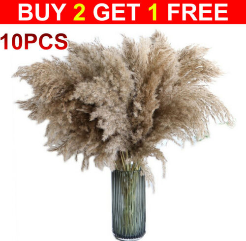 Home Decoration - Natural Dried Pampas Grass Reed Flower Bunch Bouquet Home Wedding Decor