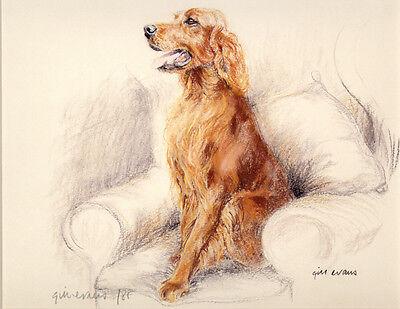 IRISH RED SETTER GUNDOG DOG LIMITED EDITION PRINT - Artists Proof # 30/85