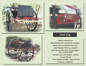Irish Gig London Ontario image 4