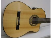 Narvaez CDG9FCW Electro-Classical