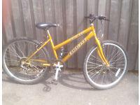 Unisex Emmelle Mountain bike
