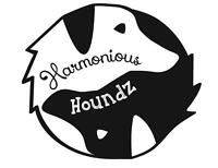 Dog Walking, Pet Sitting, and more with Harmonious Houndz
