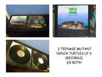 1980'S TEENAGE MUTANT NINJA TURTLES LP RECORDS