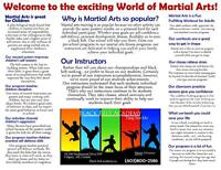 Learn Karate Become a Black Belt
