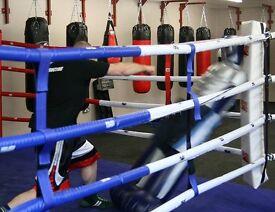 Kick Dummy-Punch Bag Boxing Taekwondo Karate Martial Arts Kung Fu Kickboxing