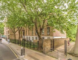 Luxury 2 Bedroom, Bloomsbury