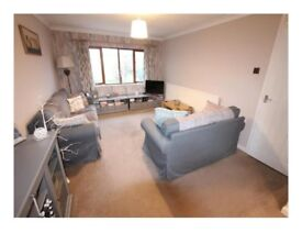 Luxury 2 bedroom flat near Hinckley town centre