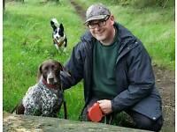 Clover & Friends Dog Walking / Dog Walker