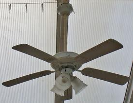 Ceiling Light Fan