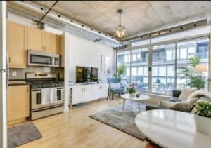 loft apartments condos for sale or rent in toronto gta