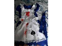 Alice in wonderland costume.