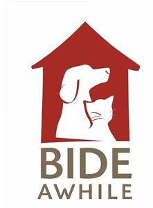 Do you have a cat(s) that needs rehoming? Contact Bide Awhile