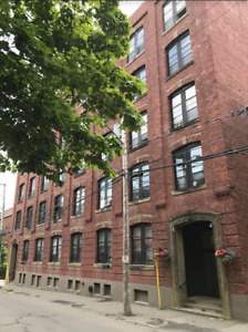 Office spaces / Artist studios available at 89 Canterbury!