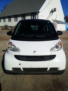 PRICED TO GO!  - 2008 Smart Fortwo Pure Coupe