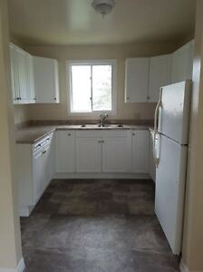 Attention McArthur/Queen's Students! - 4 Bedroom Apartment Kingston Kingston Area image 1