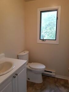 Attention McArthur/Queen's Students! - 4 Bedroom Apartment Kingston Kingston Area image 3