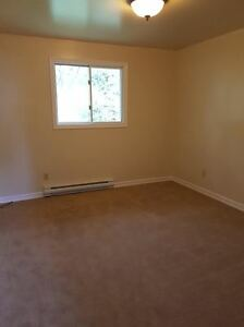 Attention McArthur/Queen's Students! - 4 Bedroom Apartment Kingston Kingston Area image 6