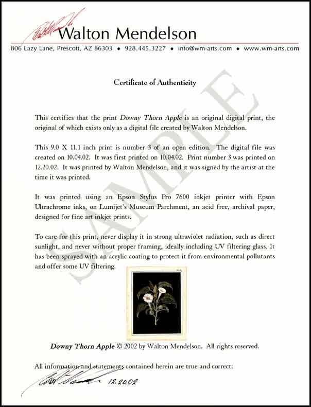 Authentication of Fine Art & Antiquities | eBay