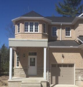 Wasaga Beach - Brand New End Unit 3 Bdrm Townhouse