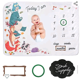 Baby gift - Baby milestone blanket NEW