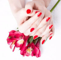 Nail Technician / Aesthetician / Manicurist Required Immediately