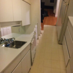 Kitchen cabinets - white, 18 linear feet (9' galley)