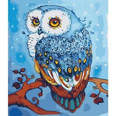 Paint By Number Kit Colorful Cartoon Owl Birds Winter DIY Picture 40x50cm - Winter Color By Number