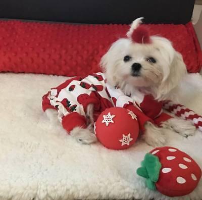 Pyjama Jogginganzug ,Schlafanzug,Hausanzug** PEARL STRAWBERRY** für Hunde **