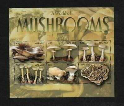 MODERN GEMS - Malawi - 2003 - World of Mushrooms - Souvenir Sheet - MNH