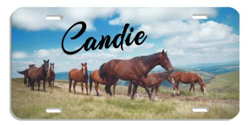 Horses Grazing Pasture Auto License Plate Personalize Gifts Men Ladies Metal