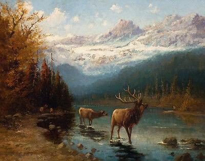 John Elk (Fery John Glacier Elk Print 11 x 14  #4738)