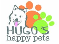 Dog Walking, pop in pet sitting and boarding for rabbits and guinea pigs