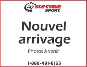 2015 Ski-Doo RENEGADE ADRENALINE 900 ACE