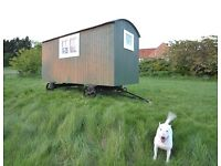 Stunning new Shepherds Hut. Built to a quality not a price.