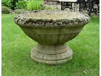 Old style Ornamental concrete planter